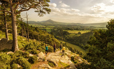 Wicklow Mountains, Echt Irland