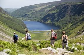 Echt Ierland, Wicklow Mountains, Irland Urlaub