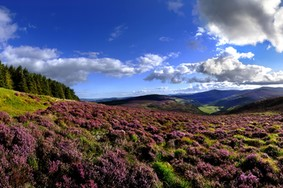 Echt Irland, Wicklow Mountains, Fly and Drive Irland
